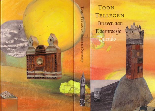 omslag Brieven aan Doornroosje (2002)